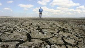 Kazakistan'da küresel ısınma nedeniyle tahıl alanları kurudu, binlerce hayvan telef oldu