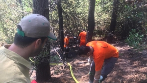 Orman yangınları için ayrılan 190 milyonluk bütçe kayıp iddiası!...