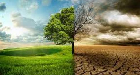 Küresel İklim Değişikliği ve Gıda Güvenliği