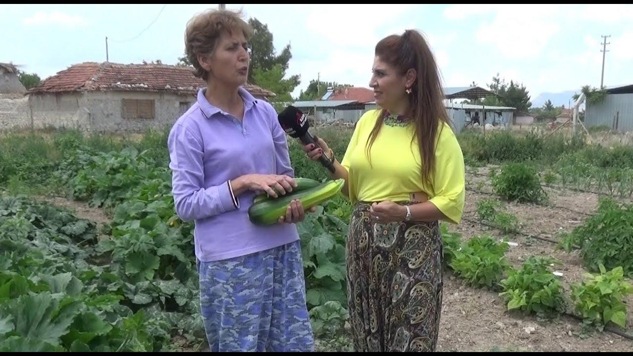 Emekli olunca köye yerleşen ailenin herkese ders olabilecek hikayeleri